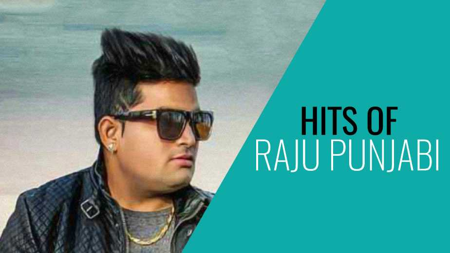 Hits of Raju Punjabi